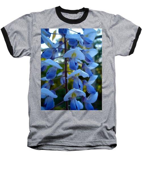 Wisteria - Blue Hooded Ladies Baseball T-Shirt