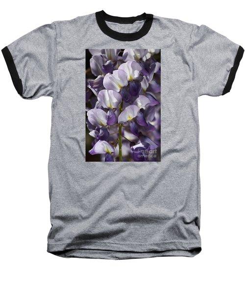 Wisteria In Spring Baseball T-Shirt