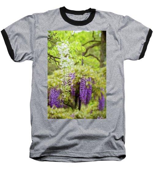 Wisteria Baseball T-Shirt