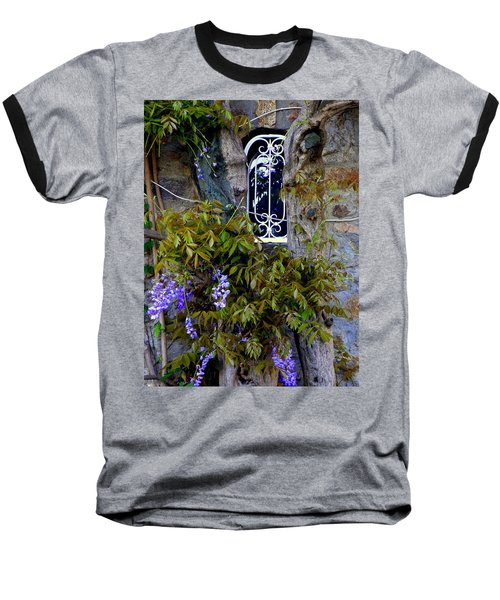 Wisteria Window Baseball T-Shirt