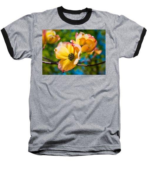 Within Baseball T-Shirt by Craig Szymanski