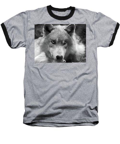 Wolf 1 Baseball T-Shirt
