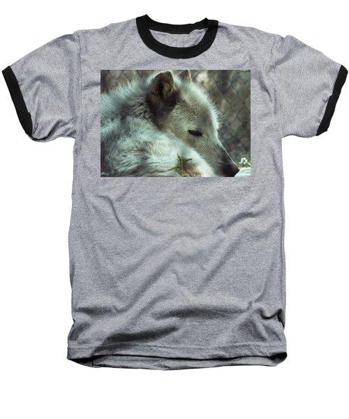 Wolf At Rest Baseball T-Shirt