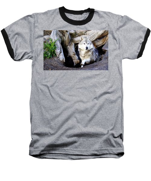 Wolf Den 1 Baseball T-Shirt by Marty Koch