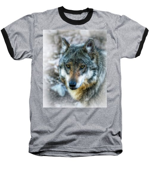 Wolf Gaze Baseball T-Shirt