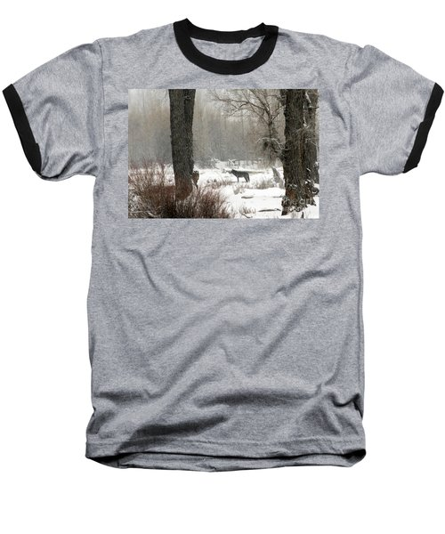 Wolf In The Forest Baseball T-Shirt