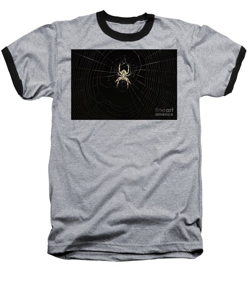 Baseball T-Shirt featuring the photograph Wolf Spider And Web by Mark McReynolds