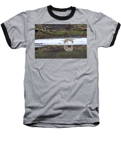 Wolflection Baseball T-Shirt by Steve Stuller