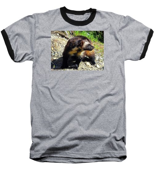 Baseball T-Shirt featuring the photograph Wolverine Wilderness by Kathy Kelly