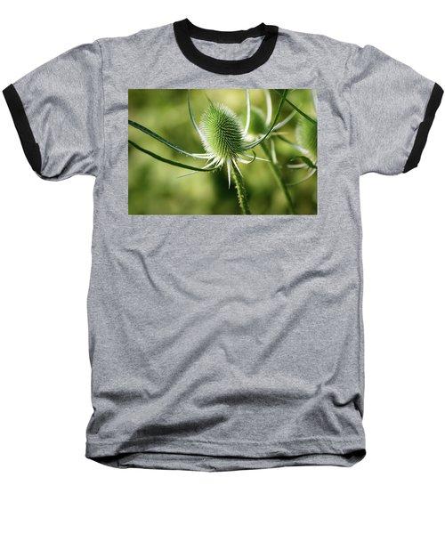 Wonderful Teasel - Baseball T-Shirt