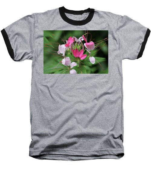Baseball T-Shirt featuring the photograph Wonders Of Cleome by Deborah  Crew-Johnson
