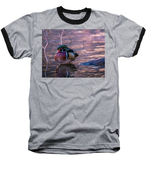 Wood Duck Resting Baseball T-Shirt