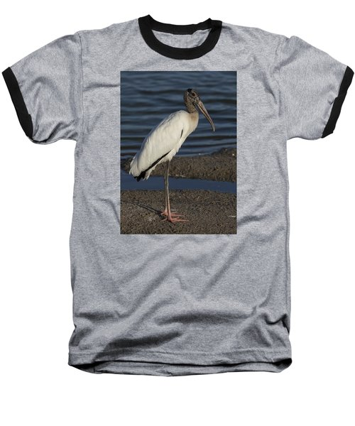 Wood Stork In The Final Light Of Day Baseball T-Shirt