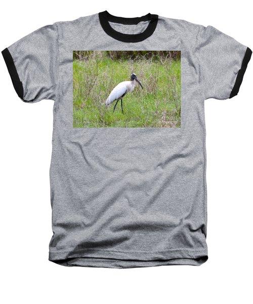 Wood Stork In The Marsh Baseball T-Shirt