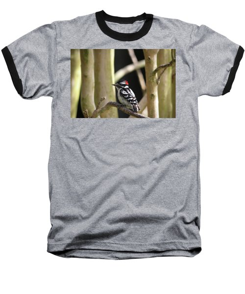 Downy Woodpecker Baseball T-Shirt