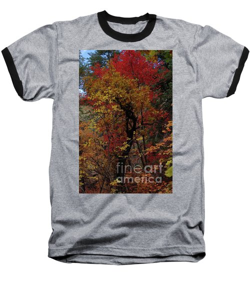 Woods In Oak Creek Canyon, Arizona Baseball T-Shirt