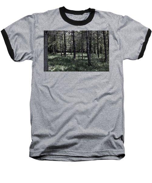 Woods Walk Baseball T-Shirt