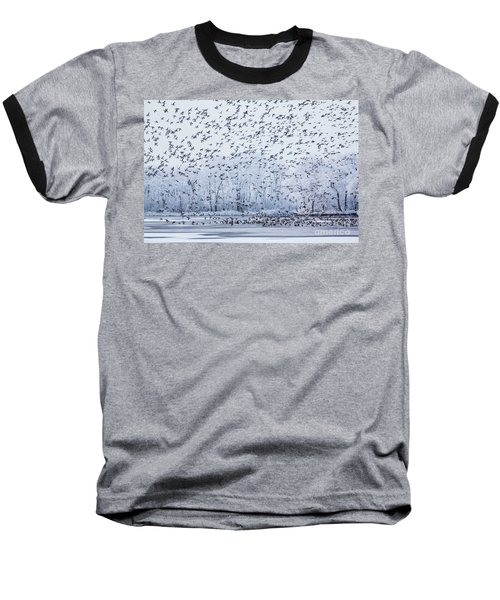 World Of Birds Baseball T-Shirt