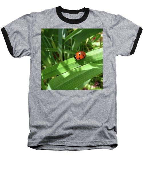 World Of Ladybug 1 Baseball T-Shirt