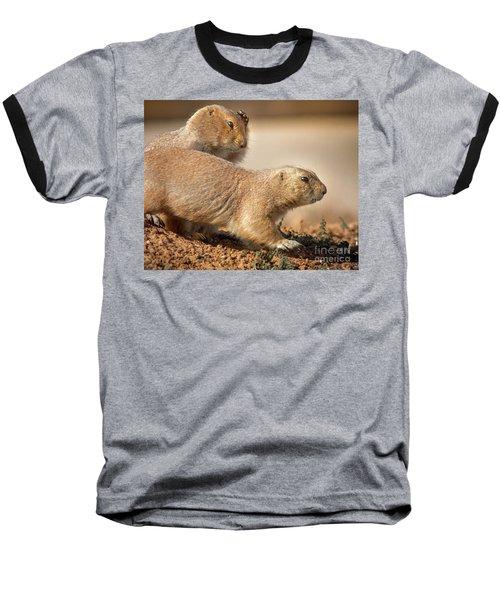 Worried Prairie Dog Baseball T-Shirt by Robert Frederick