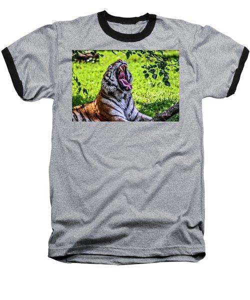 Yawning Tiger Baseball T-Shirt