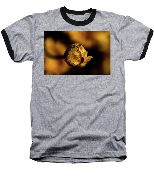 Yelllow Baseball T-Shirt by Jay Stockhaus