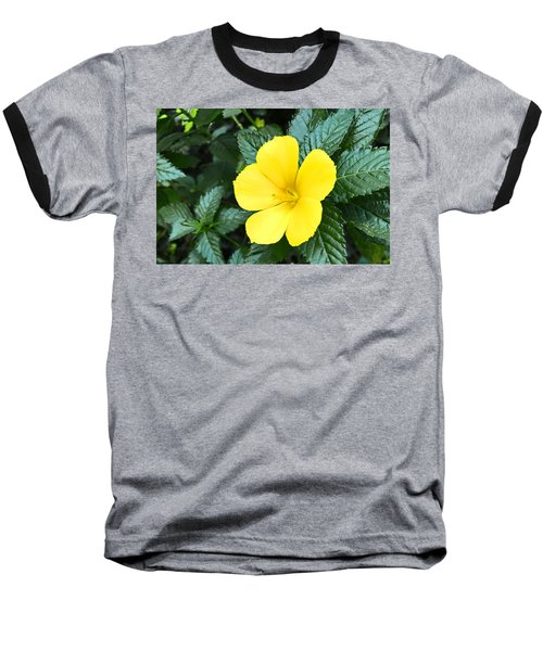 Yellow Alder Flower Baseball T-Shirt