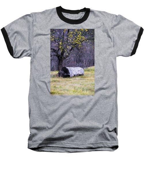 Yellow Apples Baseball T-Shirt