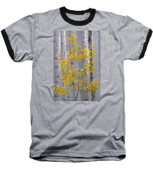 Yellow Aspen Tree Baseball T-Shirt