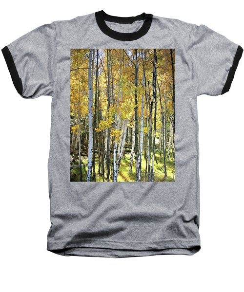 Yellow Aspens Baseball T-Shirt