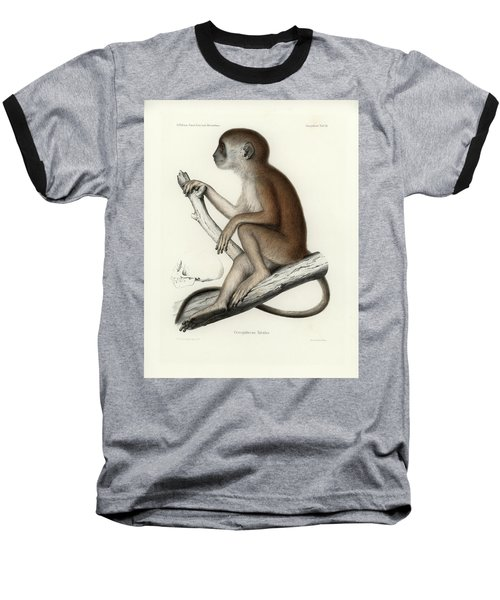 Yellow Baboon, Papio Cynocephalus Baseball T-Shirt