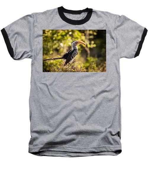 Yellow-billed Hornbill Baseball T-Shirt