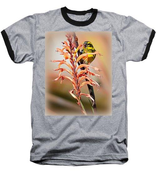Yellow Bird Hi Baseball T-Shirt