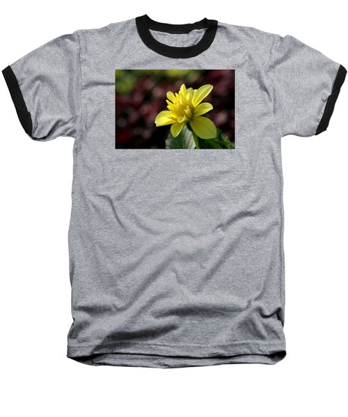 Yellow Bloom Baseball T-Shirt by Robert Och