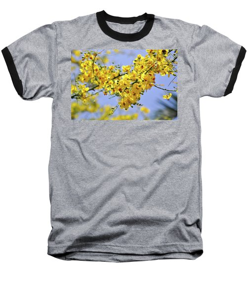 Yellow Blossoms Baseball T-Shirt by Gandz Photography