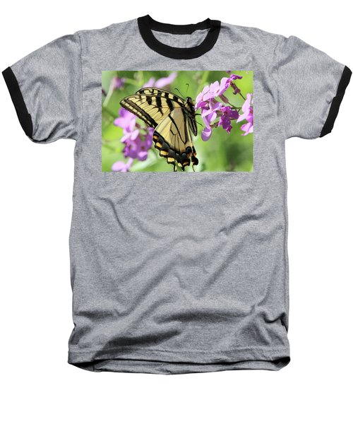 Yellow Butterfly Baseball T-Shirt by David Stasiak