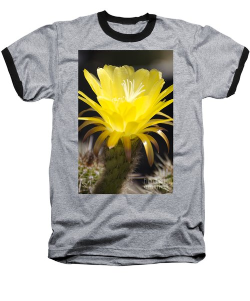 Yellow Cactus Flower Baseball T-Shirt