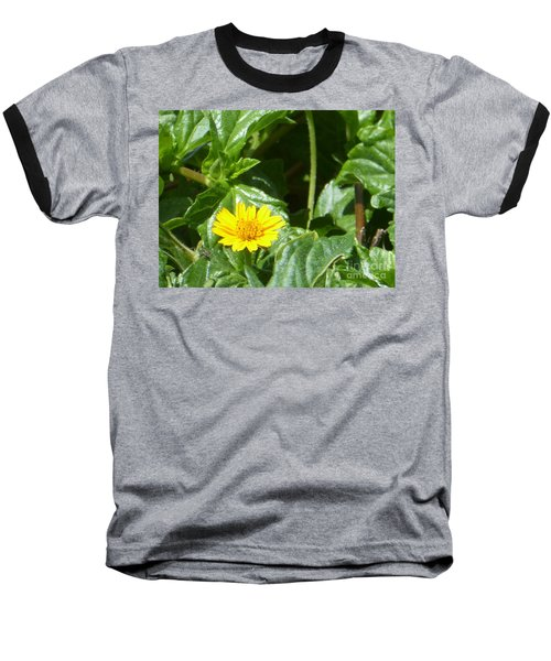 Yellow Caribbean Flower Baseball T-Shirt by Margaret Brooks