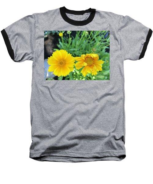 Yellow Coreopis Baseball T-Shirt