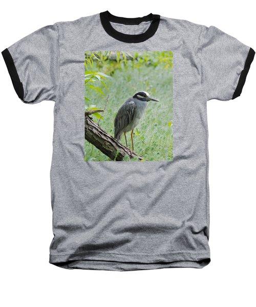 Yellow-crowned Night Heron 1 Baseball T-Shirt