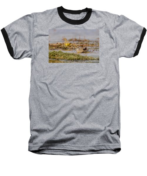 Baseball T-Shirt featuring the photograph Yellow Crowned Wagtail Juvenile Bath Time by Jivko Nakev