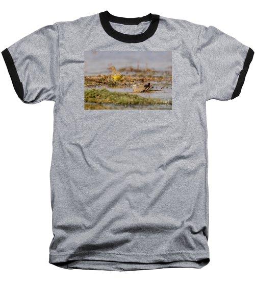 Yellow Crowned Wagtail Juvenile Bath Time Baseball T-Shirt by Jivko Nakev