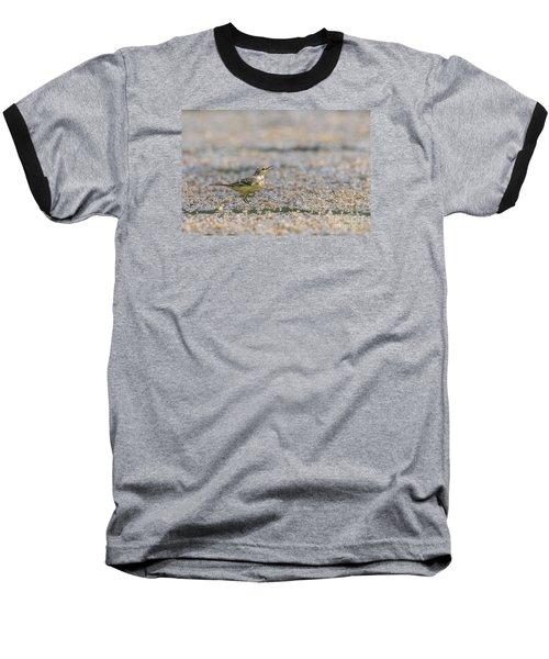 Baseball T-Shirt featuring the photograph Yellow Crowned Wagtail Juvenile by Jivko Nakev