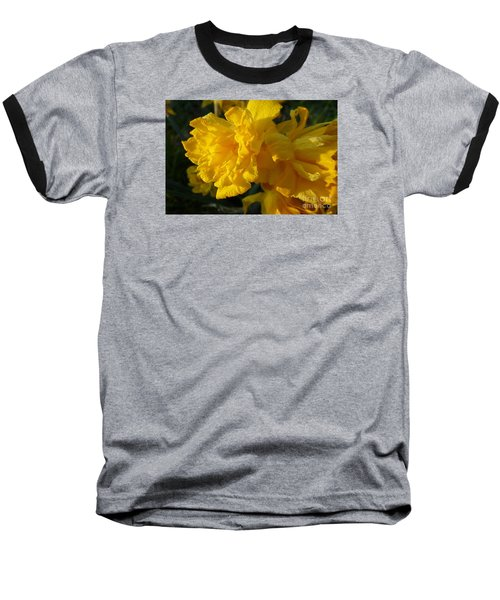 Yellow Daffodils Baseball T-Shirt