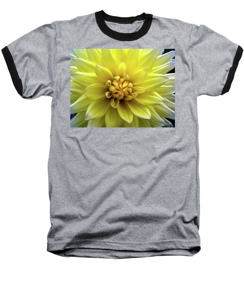 Yellow Dahlia Baseball T-Shirt
