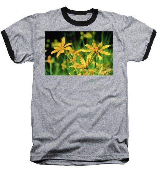 Yellow Daisies Baseball T-Shirt