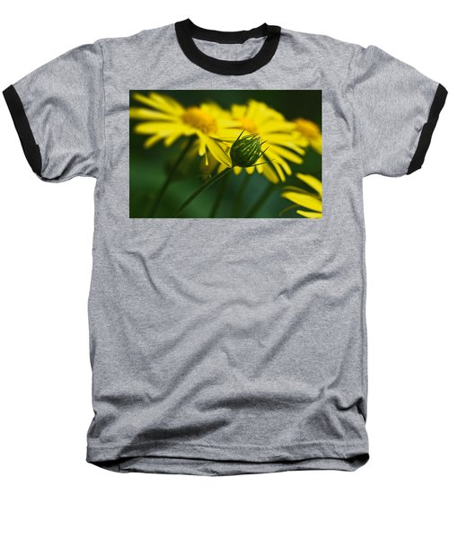 Yellow Daisy Bud Baseball T-Shirt