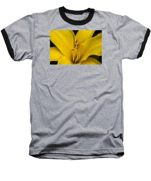 Yellow Baseball T-Shirt by Dan Hefle