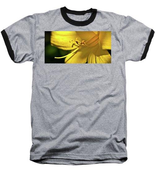 Yellow Daylily Baseball T-Shirt