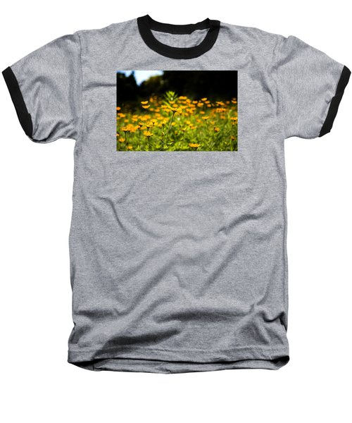Yellow Field Baseball T-Shirt by Milena Ilieva